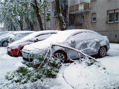 Auti u snijegu