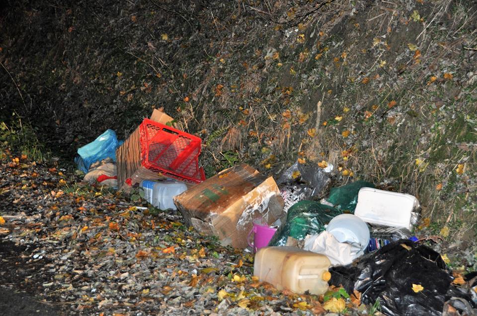 Gradonačelnik i zaposlenici Grada Križevaca uključuju se u akciju čišćenja otpada iz okoliša – Zelena čistka