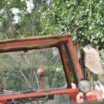 Traktor prevozio cirkular, oduzeo prednost prolaska u trenutku i došlo je do naleta motocikla