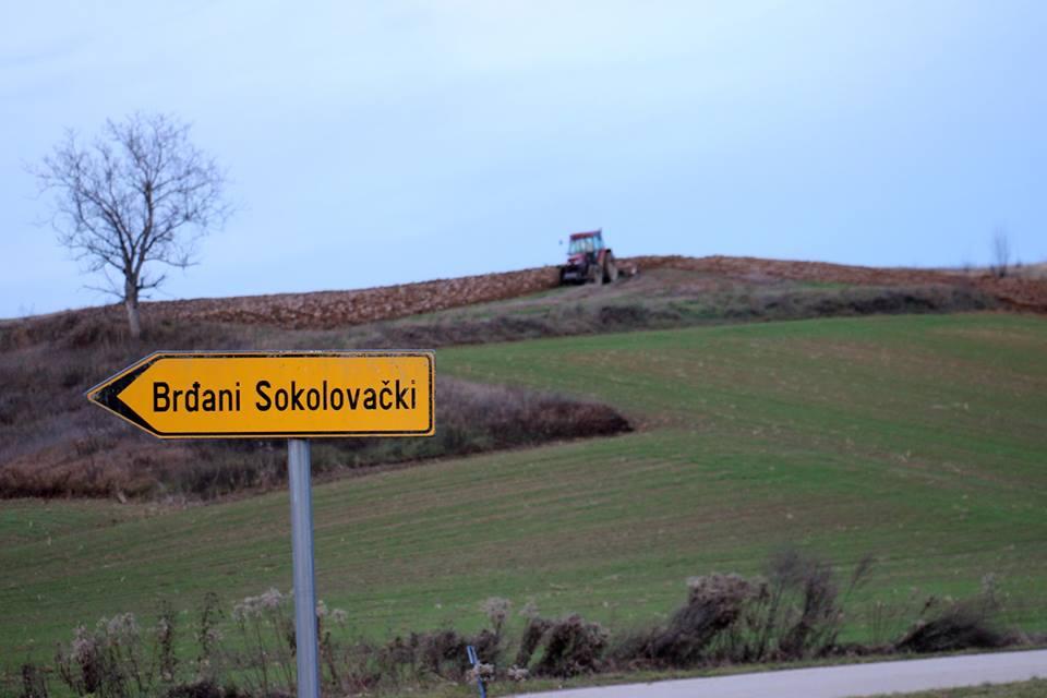 SELO MOJE MALO Brđani Sokolovački prije desetak godina imali su stotinu mliječnih krava, a dana je u selu samo petnaest