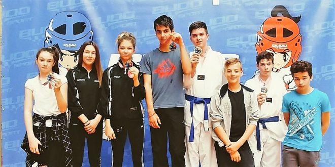 taekwondo radnik