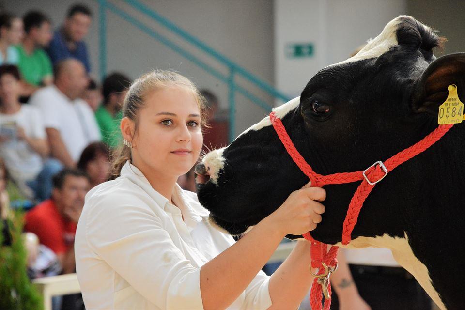 FOTO/VIDEO DRŽAVNA IZLOŽBA HOLSTEIN PASMINE U GUDOVCU Šampionkom proglašena krava Saloma obitelji Bačani