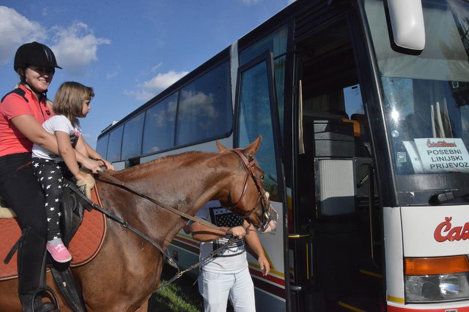 Konjima u autobus?