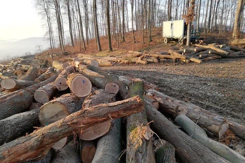 Planinari u šoku: Pred očima nam nestaju šume, ostaju samo puste gore