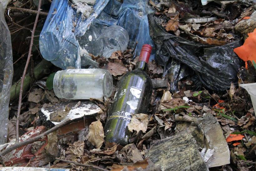 Akcija čišćenja šume Koprivnica (21)