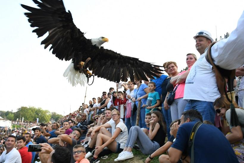 [FOTO] Sokolari iz Slovačke oduševili nekoliko tisuća posjetitelja na Renesansnom festivalu