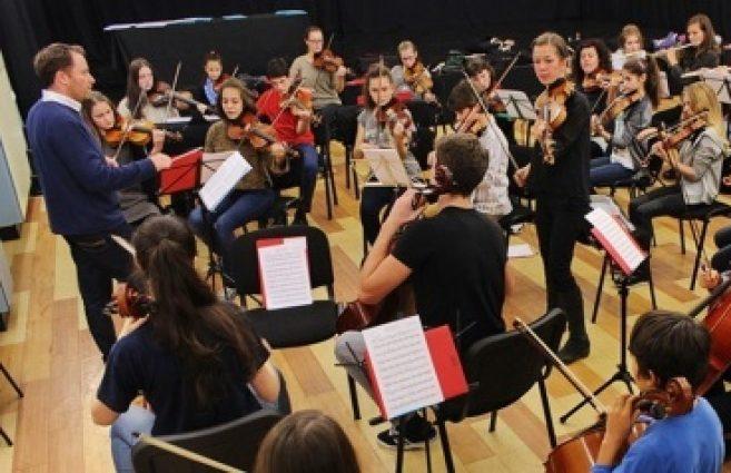upoznavanje sa slučajevima violine