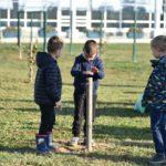 Ovogodišnja akcija sadnje stabala u Koprivnici tijekom tri dana