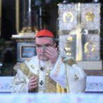 Kardinal Bozanić izrazio sućut SPC-u u povodu smrti patrijarha Irineja