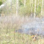 Poginula 81-godišnjakinja; spaljivala je nisko raslinje