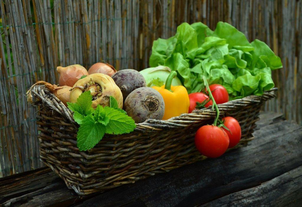 Ministarstvo poljoprivrede: U 2020. donirano 13,8 posto više hrane