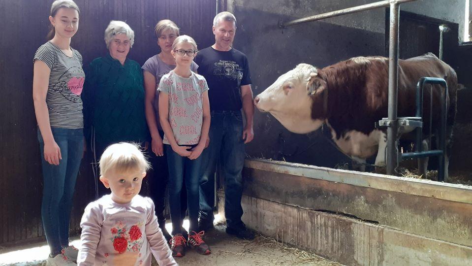 VELIKI USPJEH UZGAJIVAČA IZ STARE KAPELE Obitelj Šobak uzgojila najboljeg Royalovog bika na svijetu
