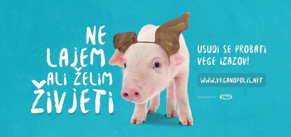 """Prijatelji životinja pozivaju na Vege izazov kampanjom """"Ne lajem, ali želim živjeti"""""""