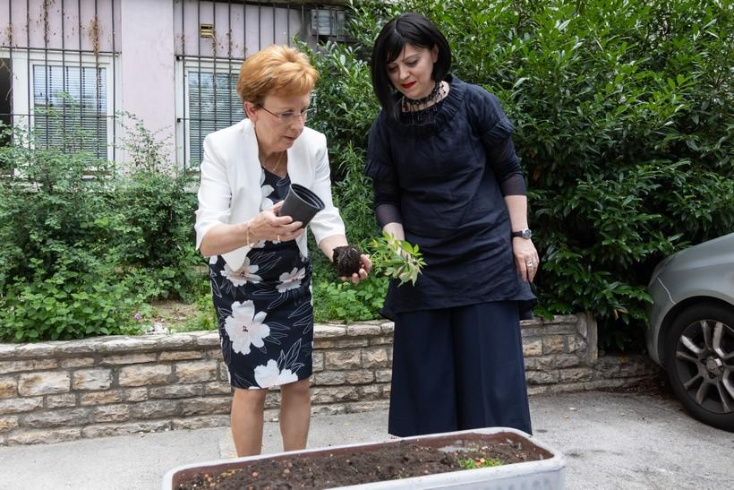 🎦 Mirela Holy posadila 'maricu': 'Lex cannabis' donosimo već u rujnu'