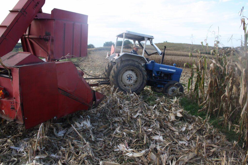 """U tijeku je berba kukuruza: """"Pajdaš se pokazao vrlo dobrim"""""""