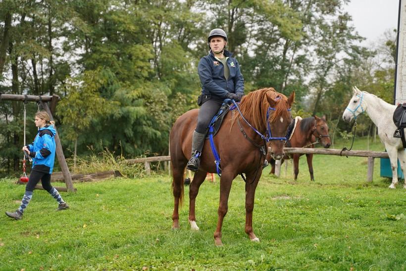 bjelovar konj (16)