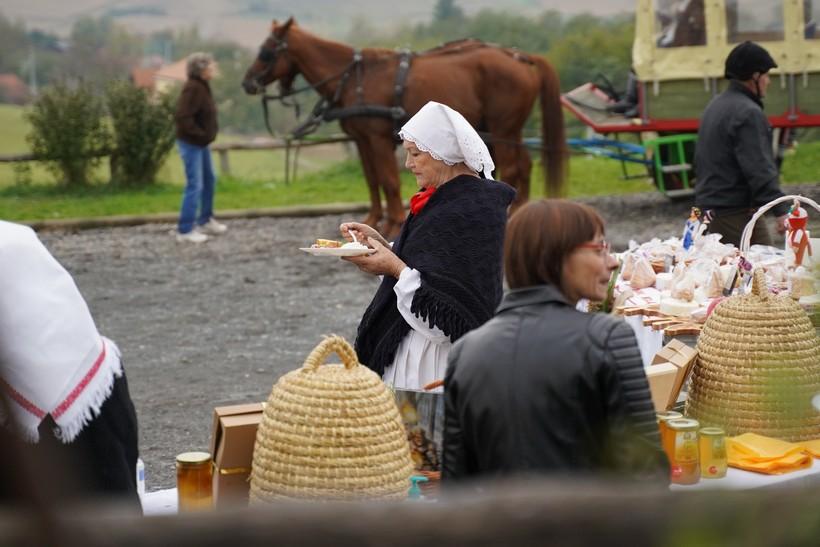 bjelovar konj (26)