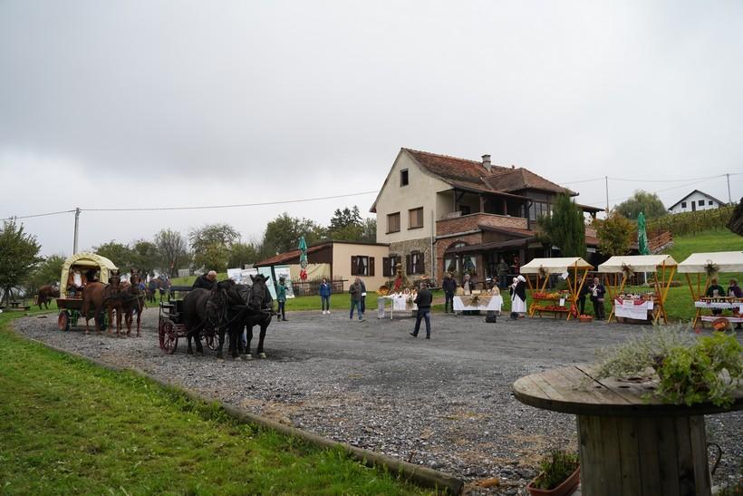 bjelovar konj (38)