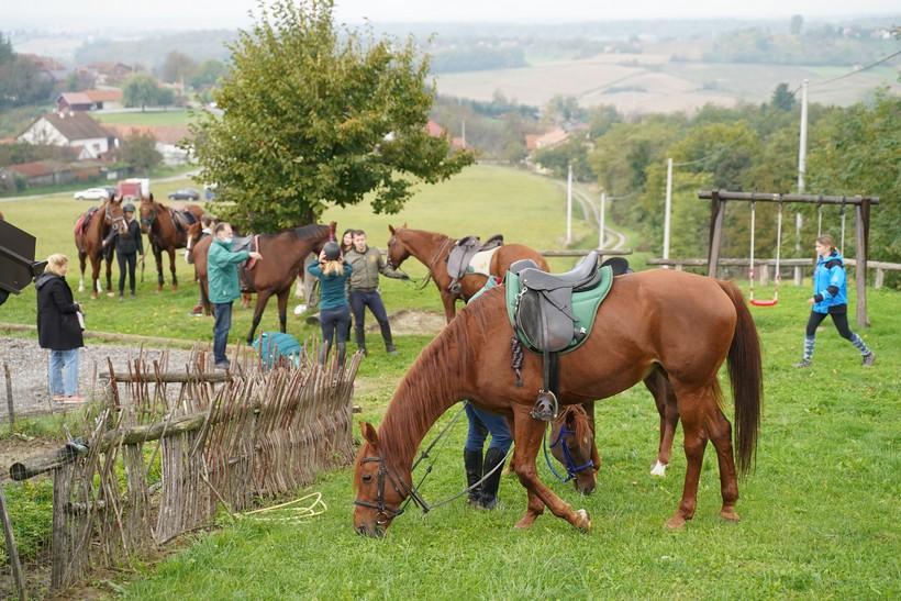 bjelovar konj (45)