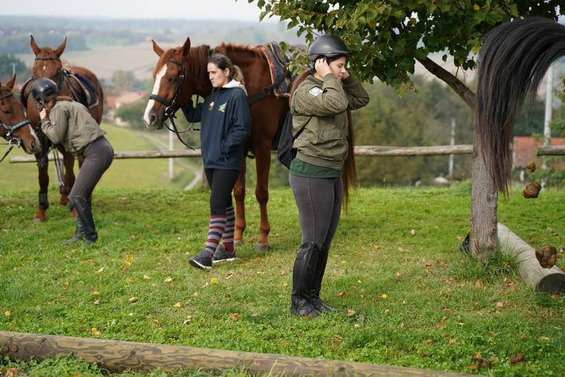 bjelovar konj (47)
