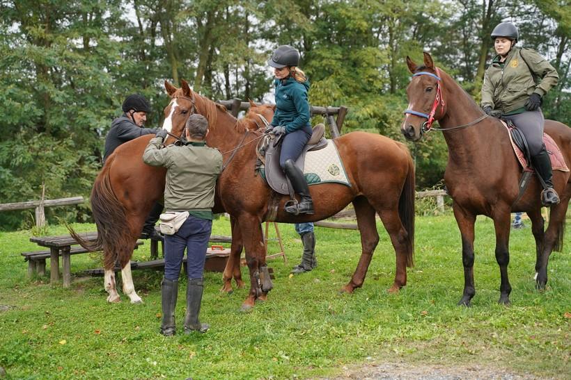 bjelovar konj (48)