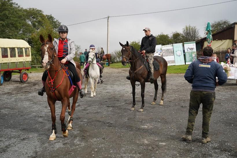 bjelovar konj (49)