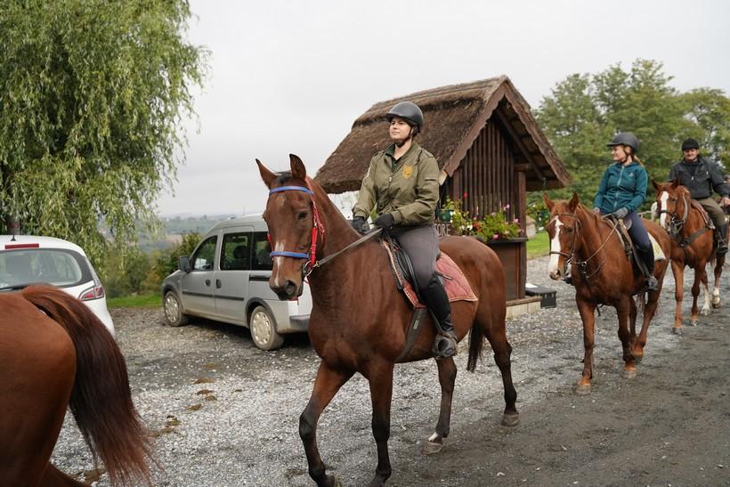 bjelovar konj (54)