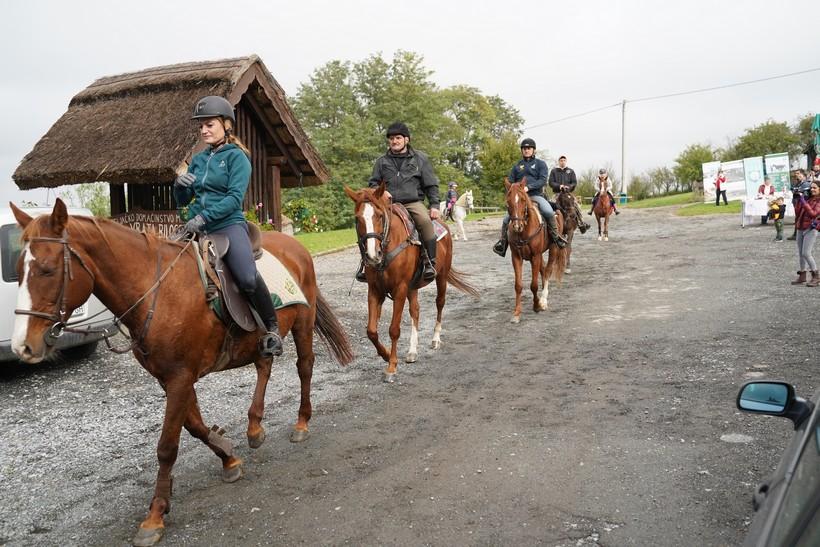 bjelovar konj (55)