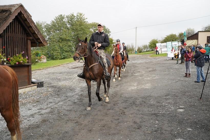 bjelovar konj (57)