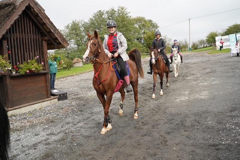 bjelovar konj (58)