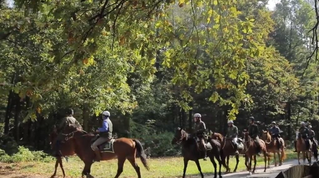 U subotu predstavljanje Bilogorske konjičke staze
