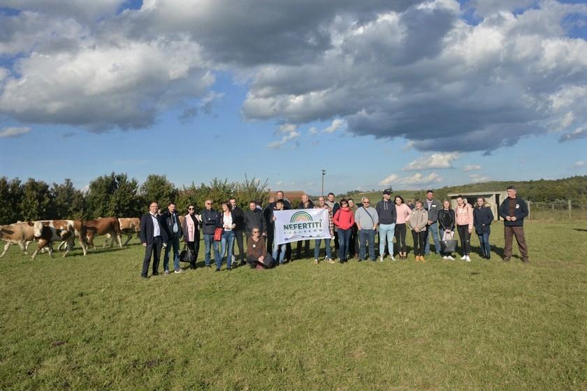 """SIMENTALAC SE VRAĆA KUĆI """"Jako je važna održivost naše poljoprivrede i bitno je da poljoprivredu počnu preuzimati mladi"""""""