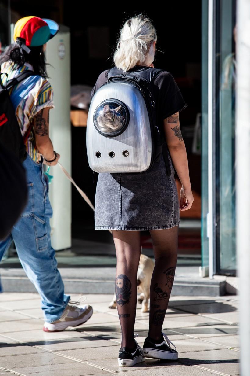 Djevojka prošetala Splitom s mačkom u torbi