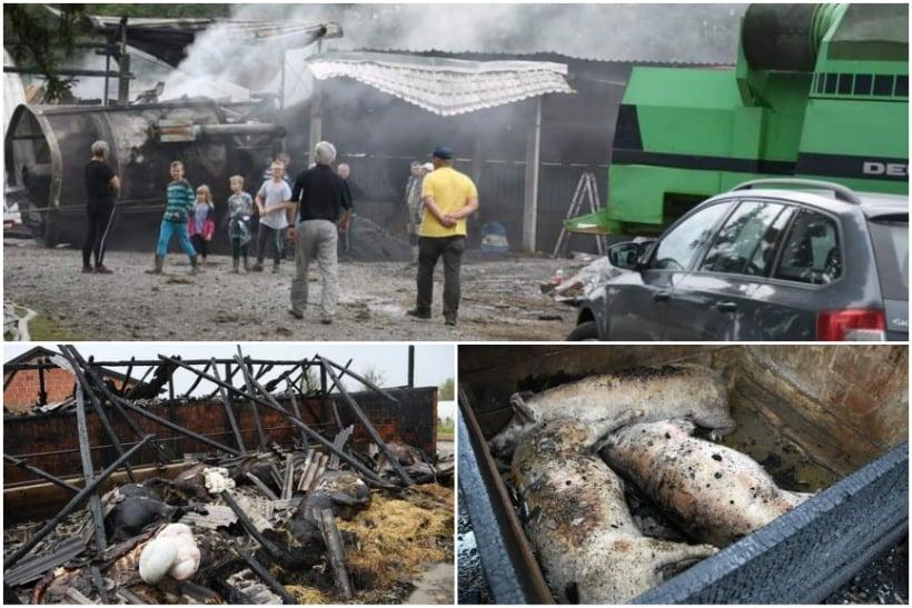 🖼️|🎦 STRAVIČNI PRIZORI Požar 'progutao' gotovo sve na farmi