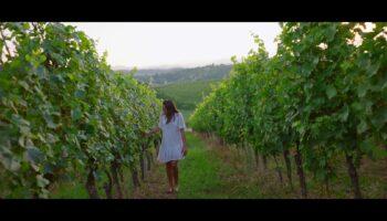 🎦 Novi destinacijsko-turistički video Svetog Ivana Zeline